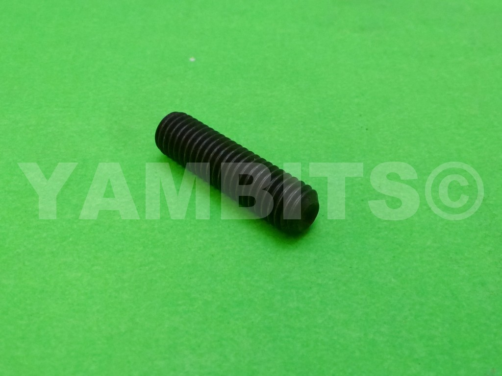 RD350LC Clutch Worm Adjuster Screw