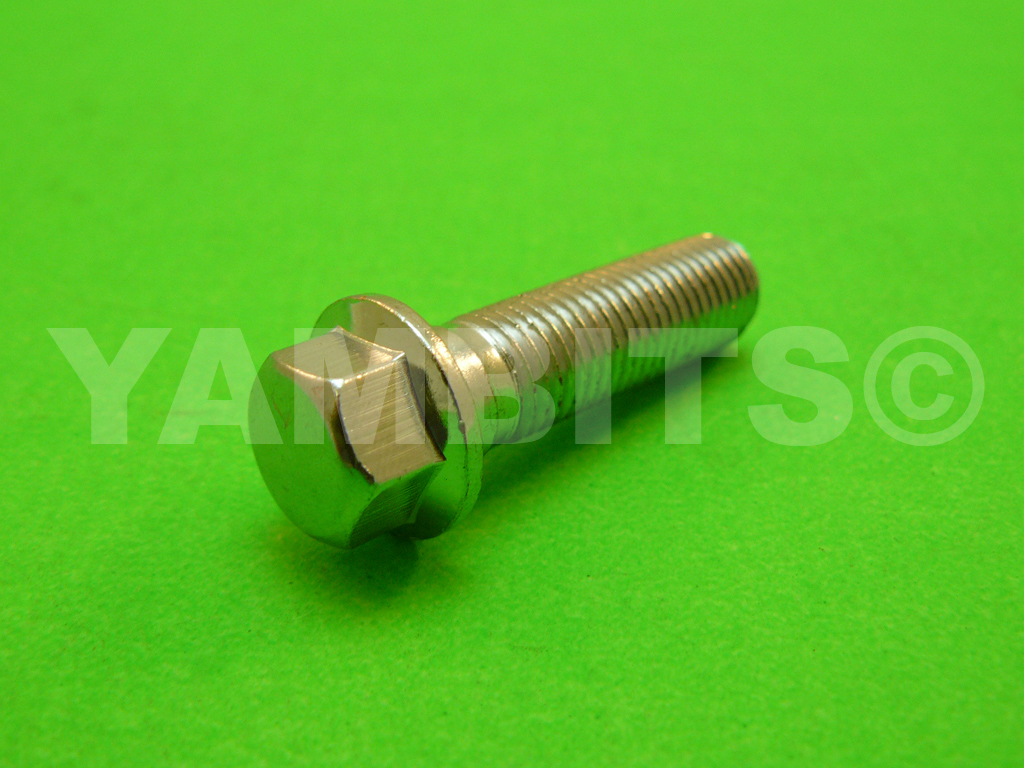 RZ350RR Brake Caliper Mounting Bolt Rear