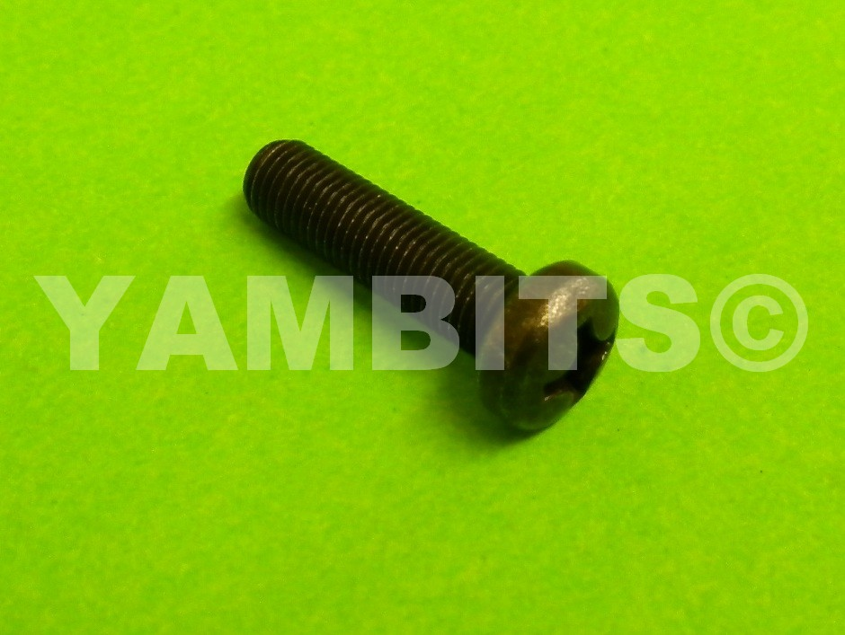 RD350LC Brake Lever Adjusting Screw