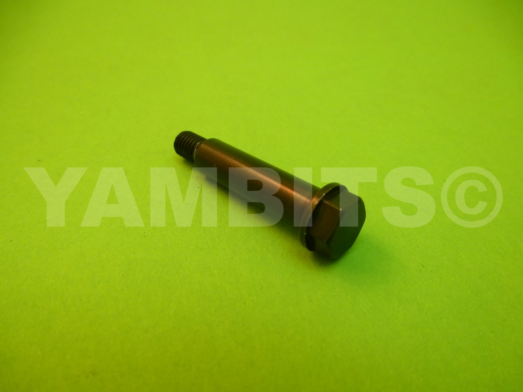 RD350LC Indicator Lamp Pinch Bolt