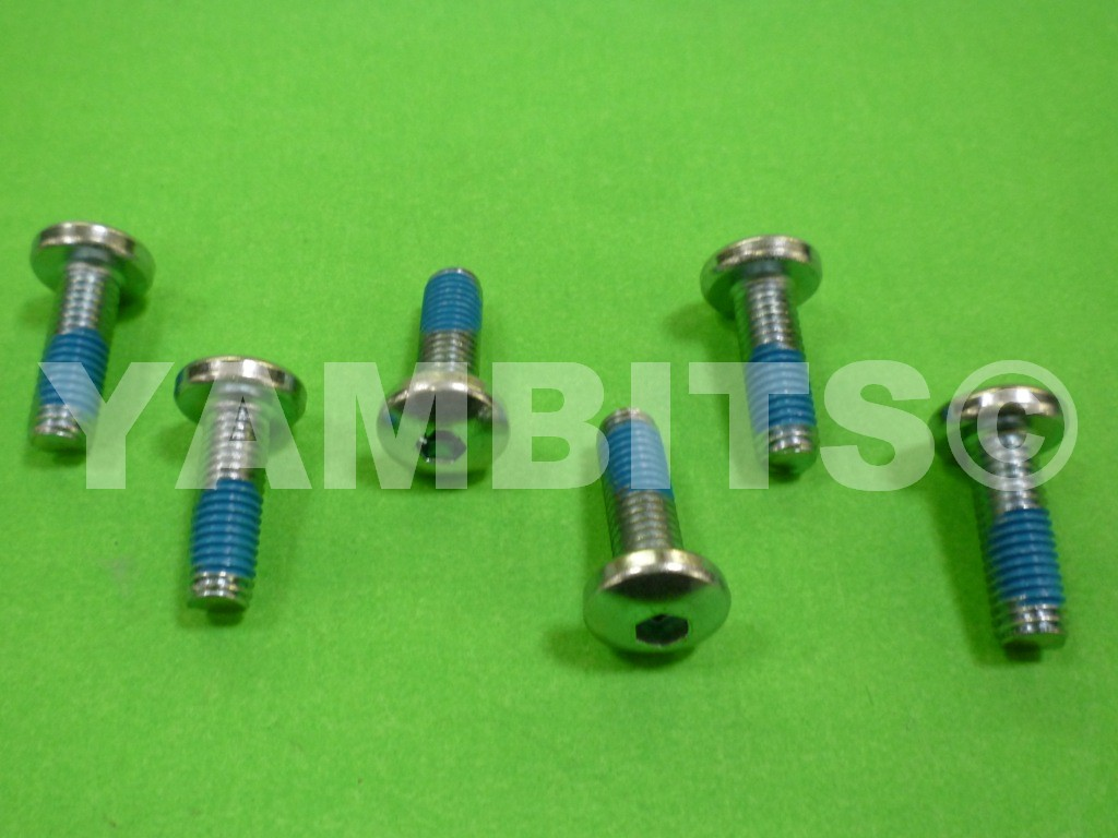 FZ400R Brake Disc Bolt Kit Front