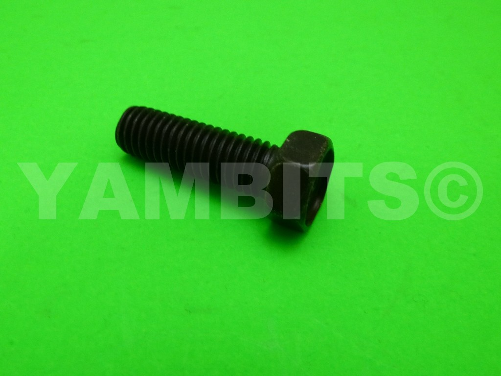 RD125LC MK1 Brake Disc Bolt