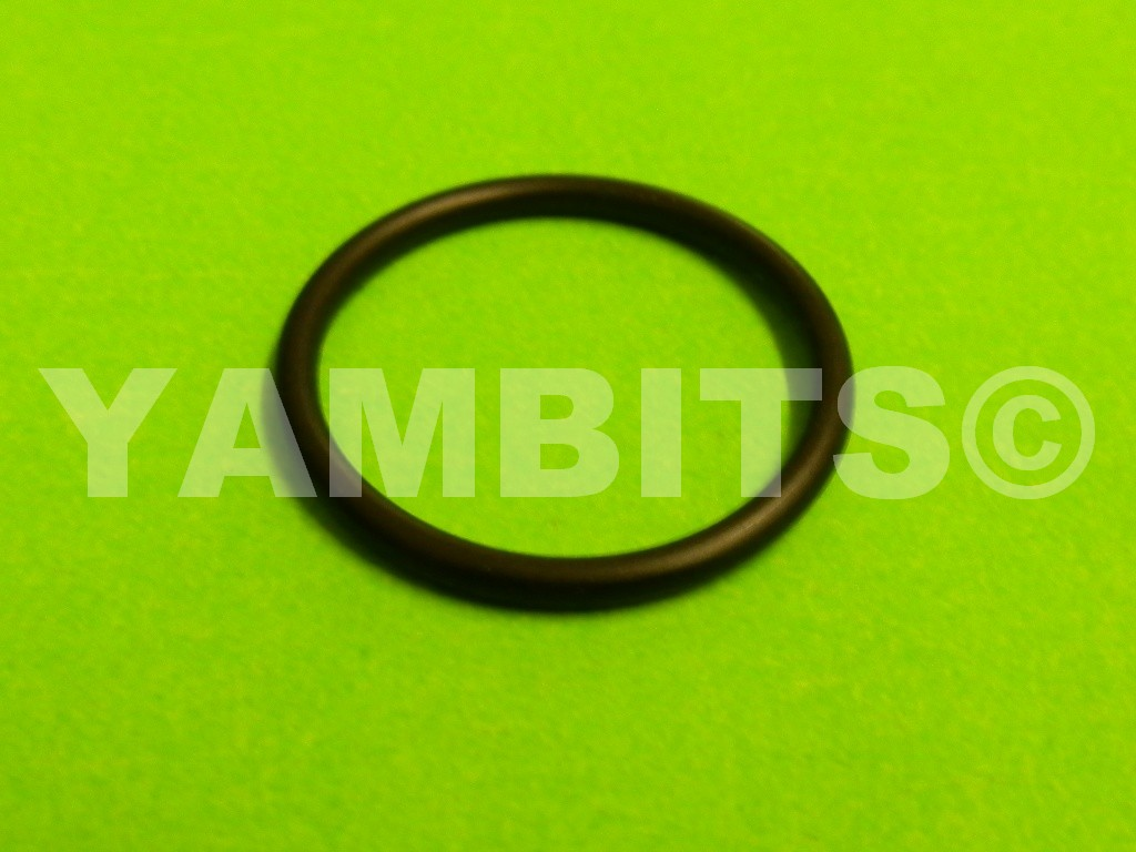 DT125LC MK1 Thermostat O-Ring