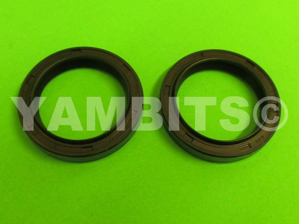 RZV500R Fork Oil Seals