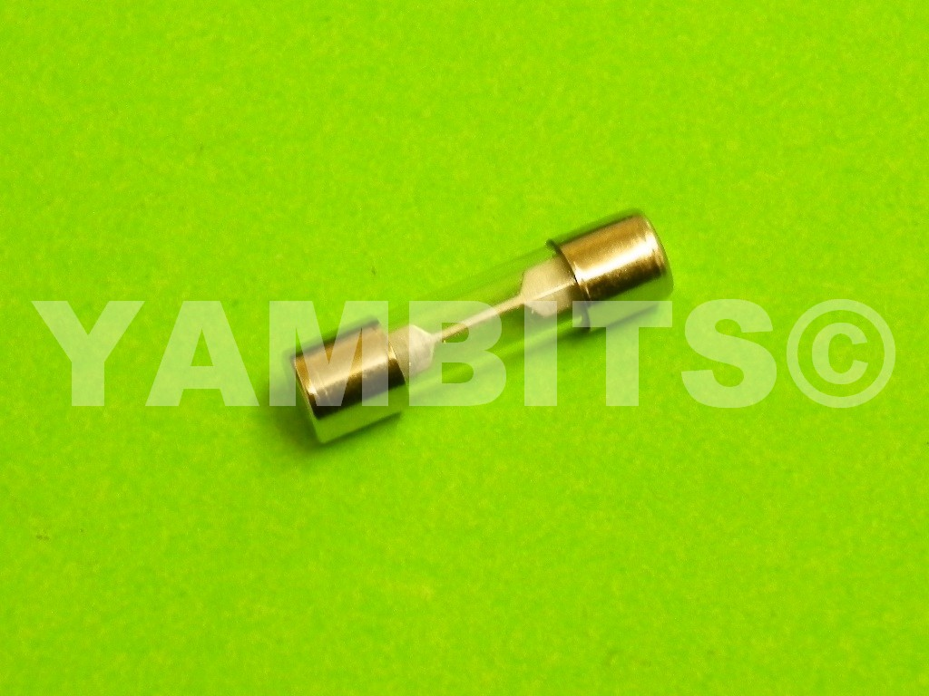 RZ350W Fuse 25mm Glass 20 Amps