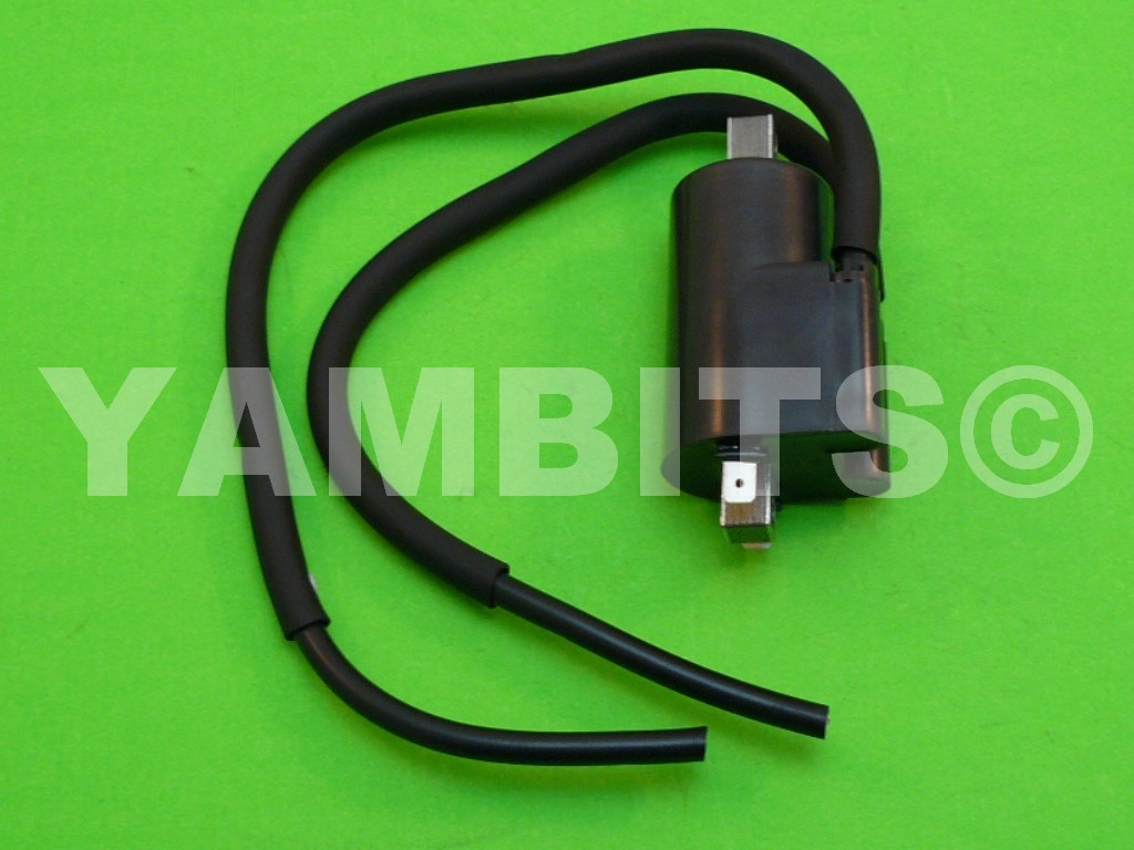RZ250R Ignition Coil