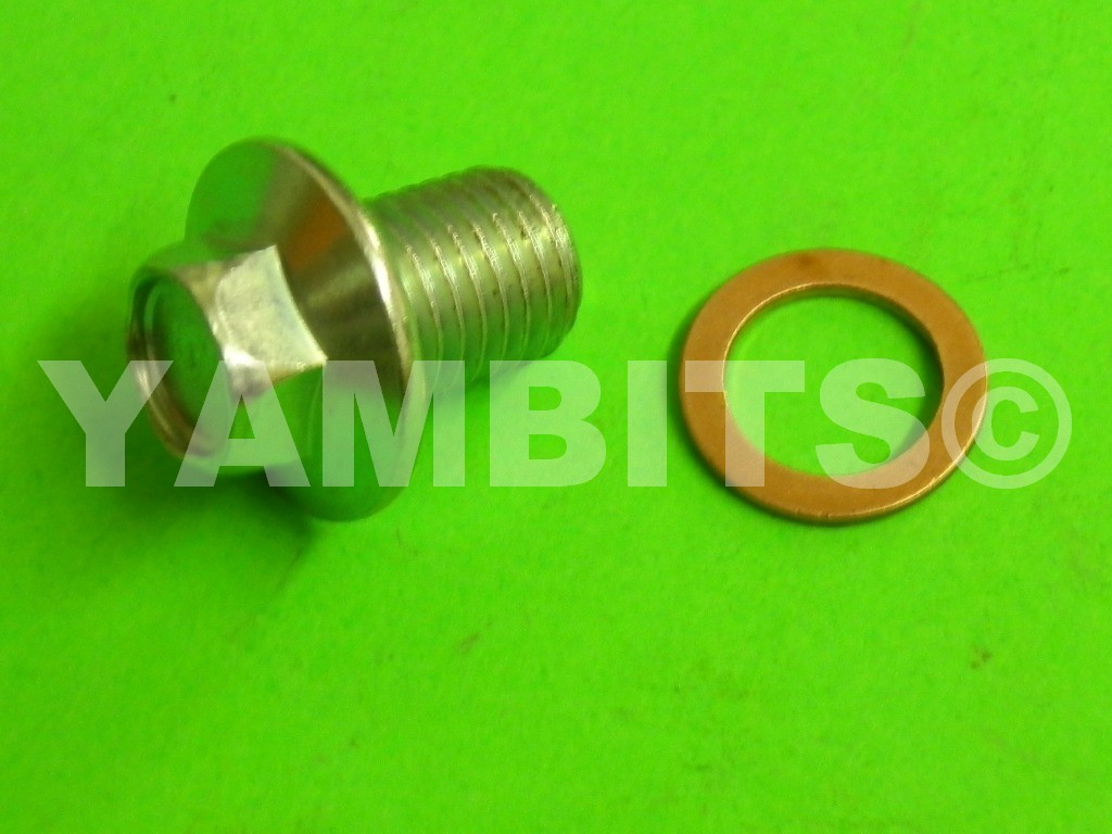 RS100 Gearbox Drain Plug & Washer