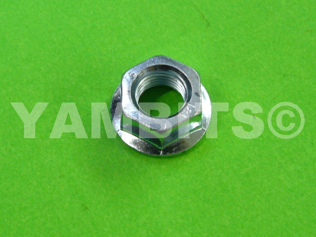 DT125R Flywheel / Generator Nut