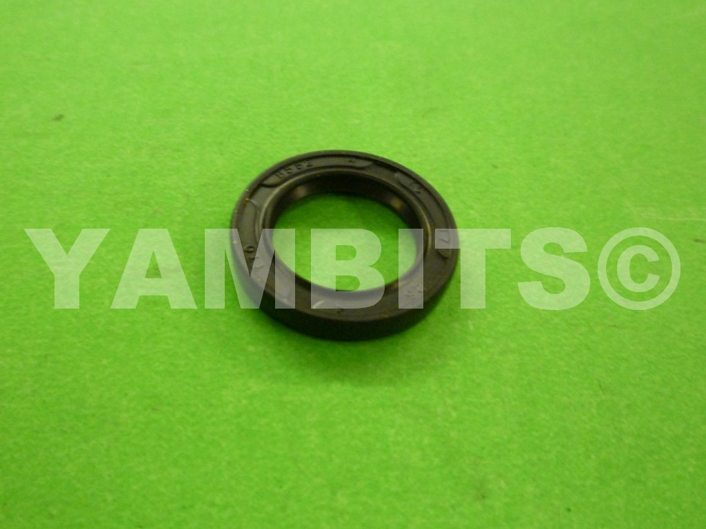 DT100 Kick Start Oil Seal
