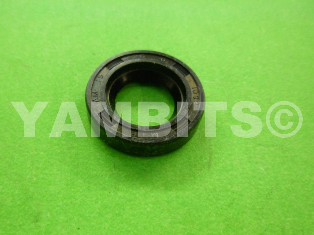 AS1 Kick Start Oil Seal
