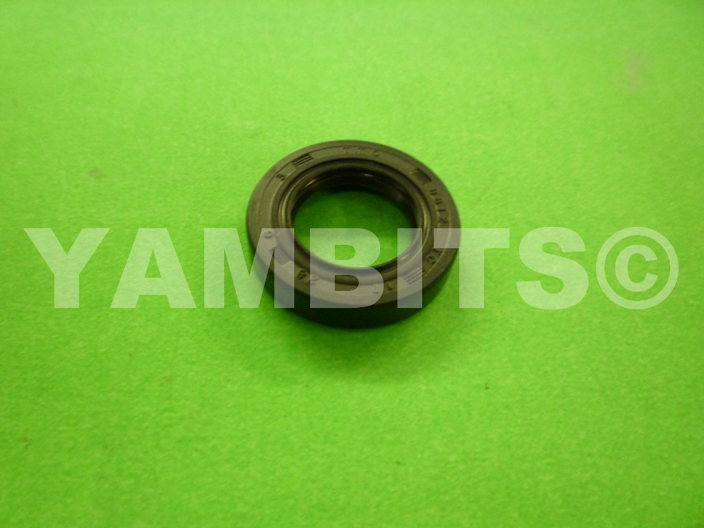 DT250 Clutch Arm Oil Seal