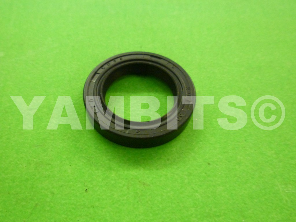 DT200 40R Kickstart Oil Seal