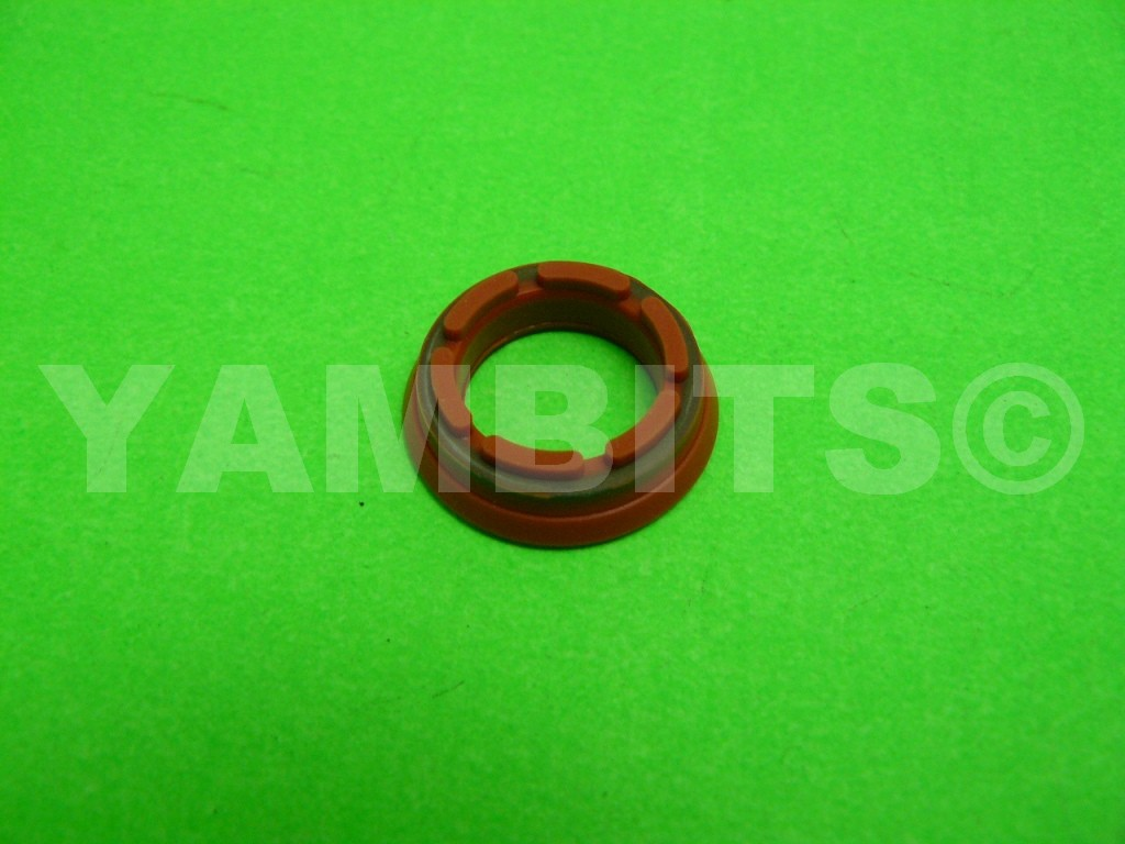 DT230 Lanza Powervalve Oil Seal