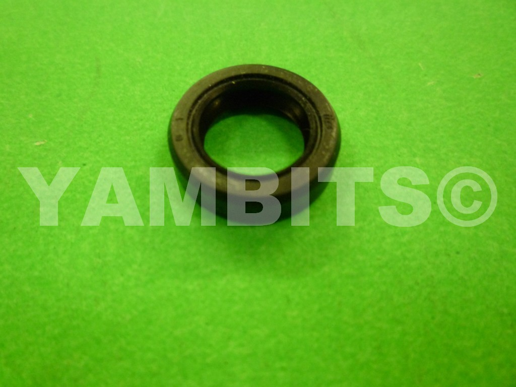 WR250F Decompressor Shaft Oil Seal