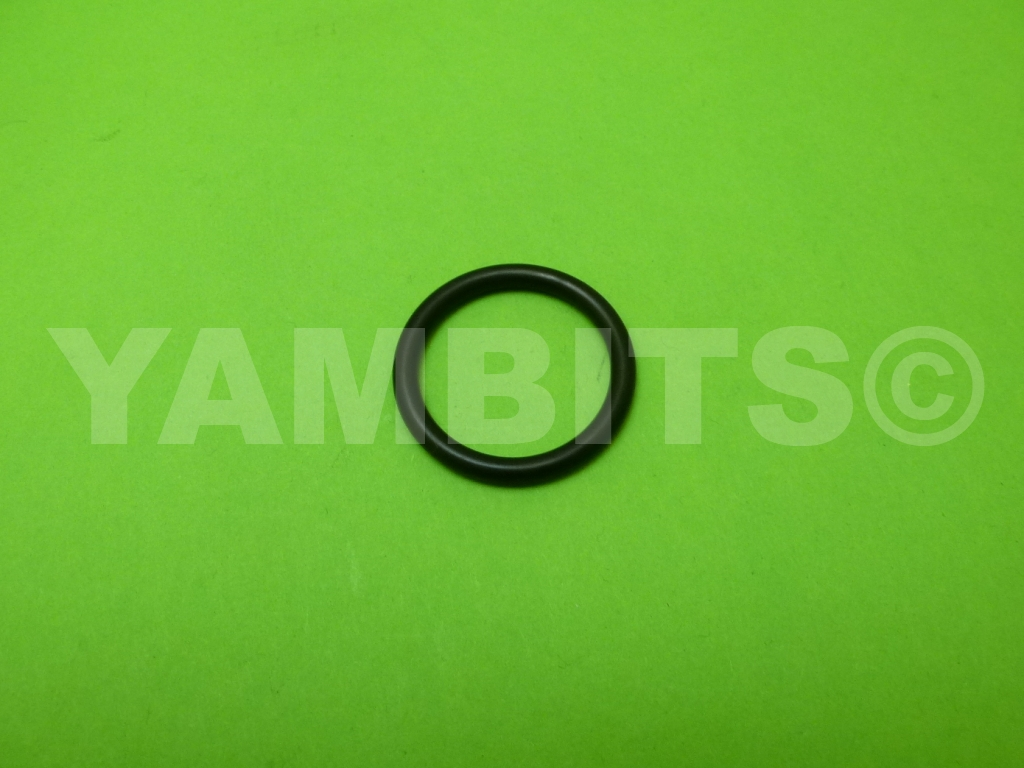 RZV500R Fork Top Plug O-Ring