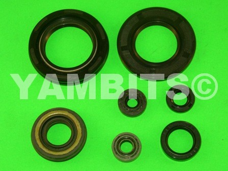 RD350 Engine Oil Seal Kit