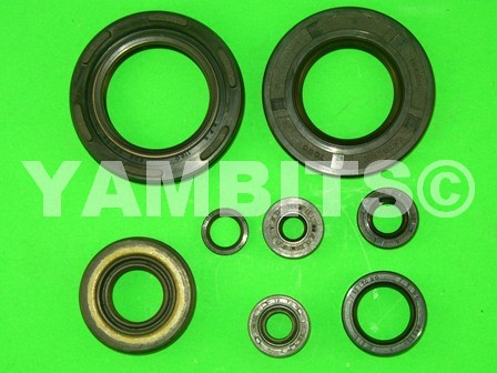 RD400E USA Engine Oil Seal Kit