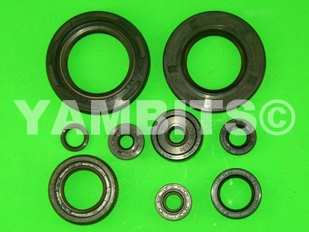 RD250LC Engine Oil Seal Kit