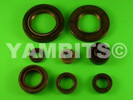 RD350 YPVS LC2 Engine Oil Seal Kit