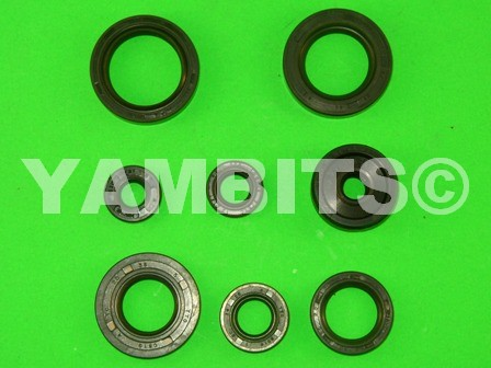 DT125LC MK1 Engine Oil Seal Kit