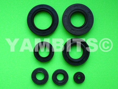 DT50M Engine Oil Seal Kit