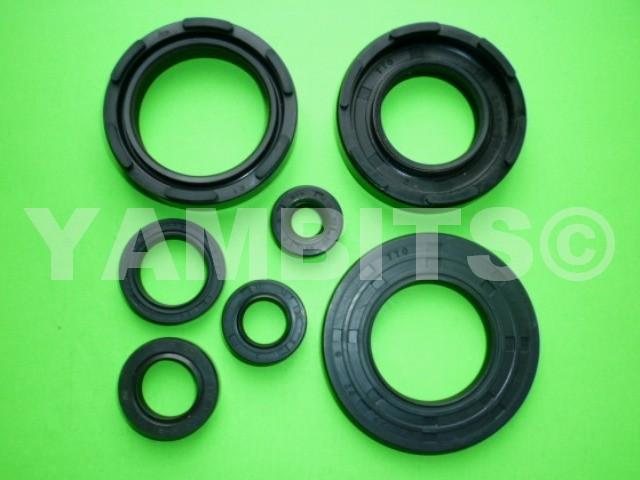 DT250 Engine Oil Seal Kit
