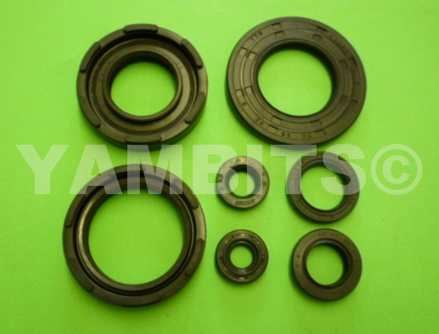 DT250MX Engine Oil Seal Kit