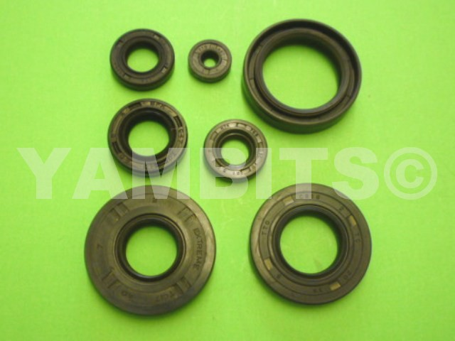 DT50MX Engine Oil Seal Kit