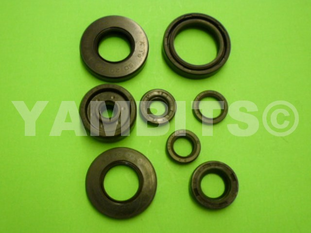 DT80LC Engine Oil Seal Kit