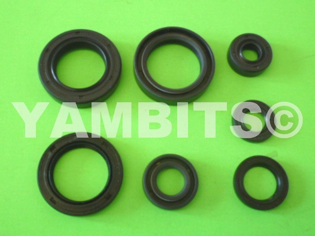 DT175 Engine Oil Seal Kit