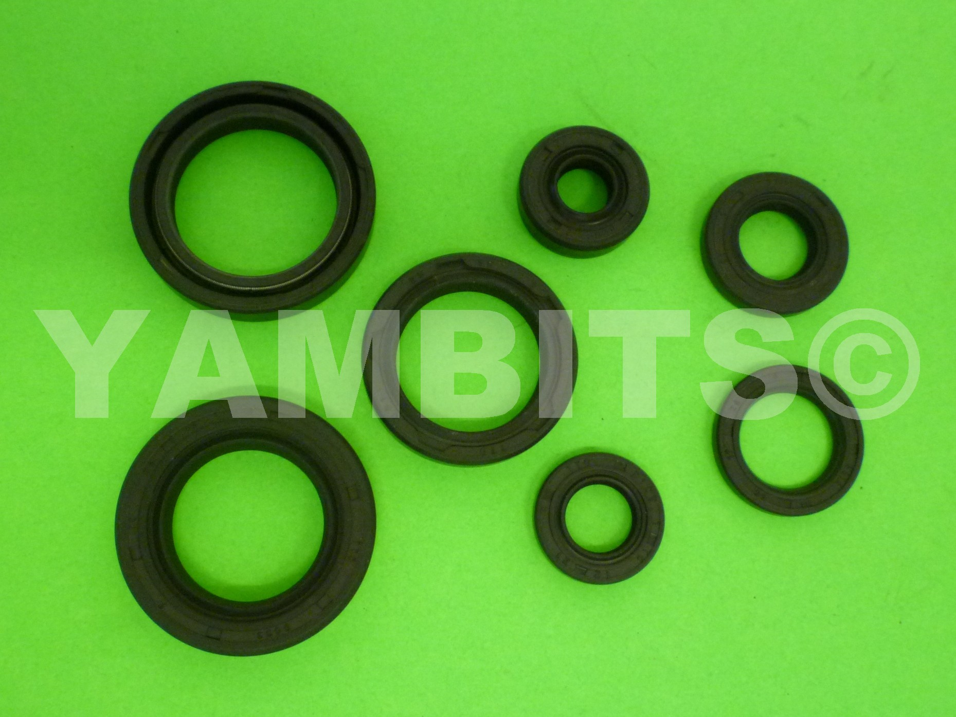 DT125MX Engine Oil Seal Kit