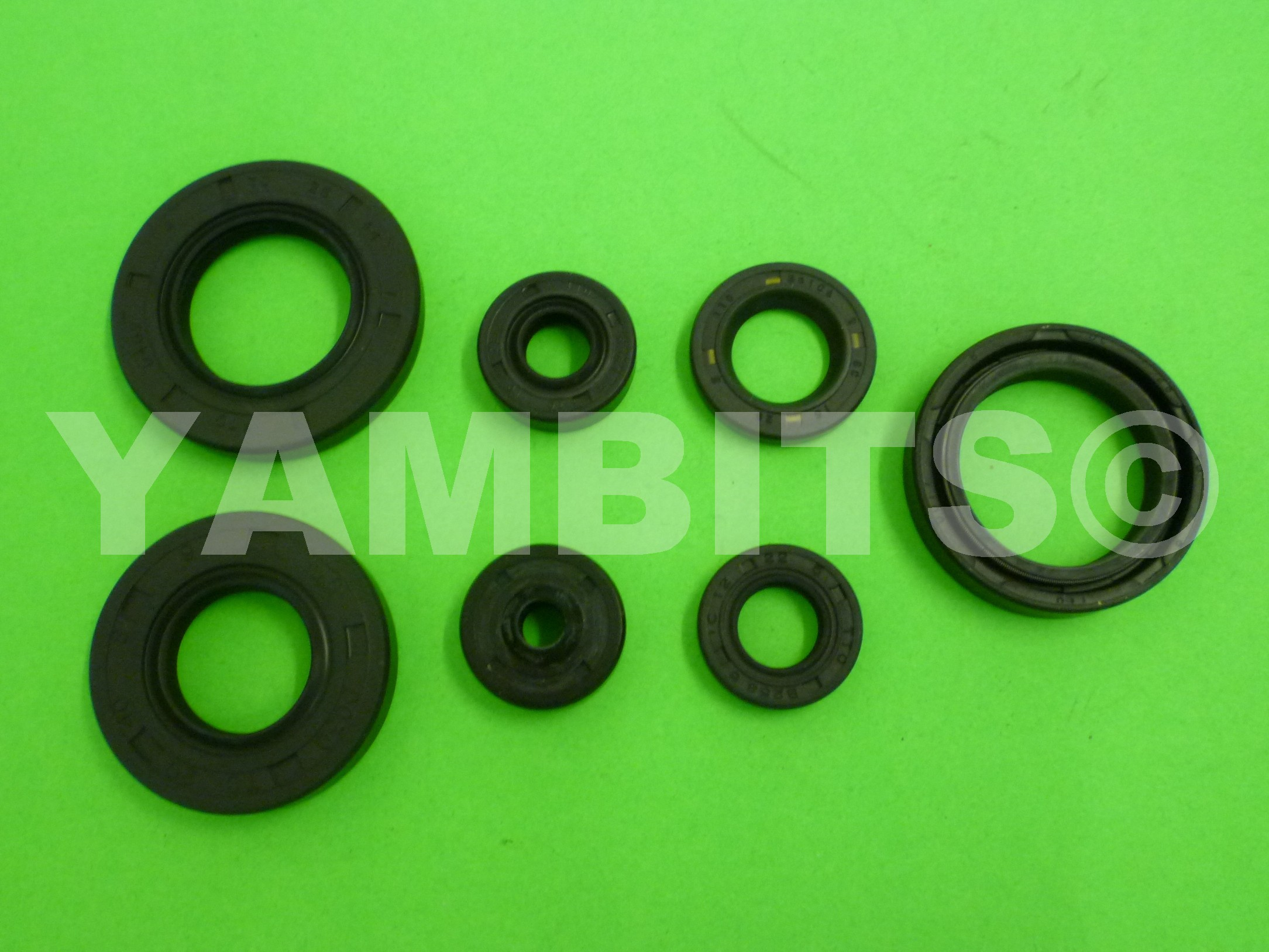 RD125 1977 Engine Oil Seal Kit
