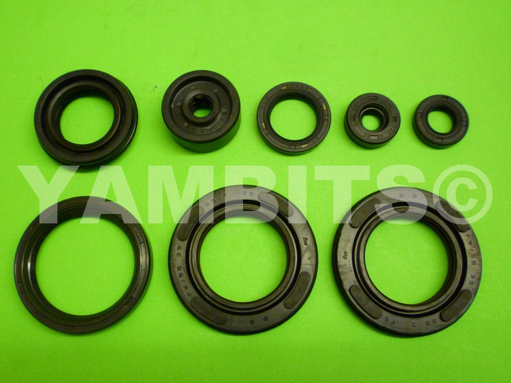 RD500LC Engine Oil Seal Kit