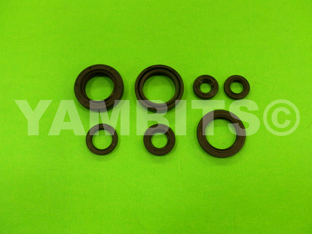 DT125 Engine Oil Seal Kit