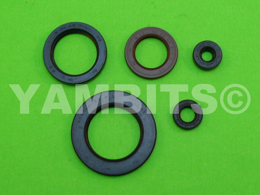 FJ1100 Engine Oil Seal Kit