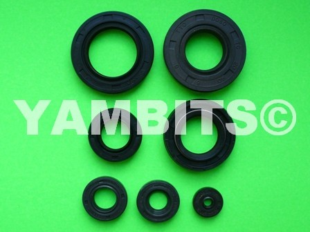 FS1 Engine Oil Seal Kit 1977-1978