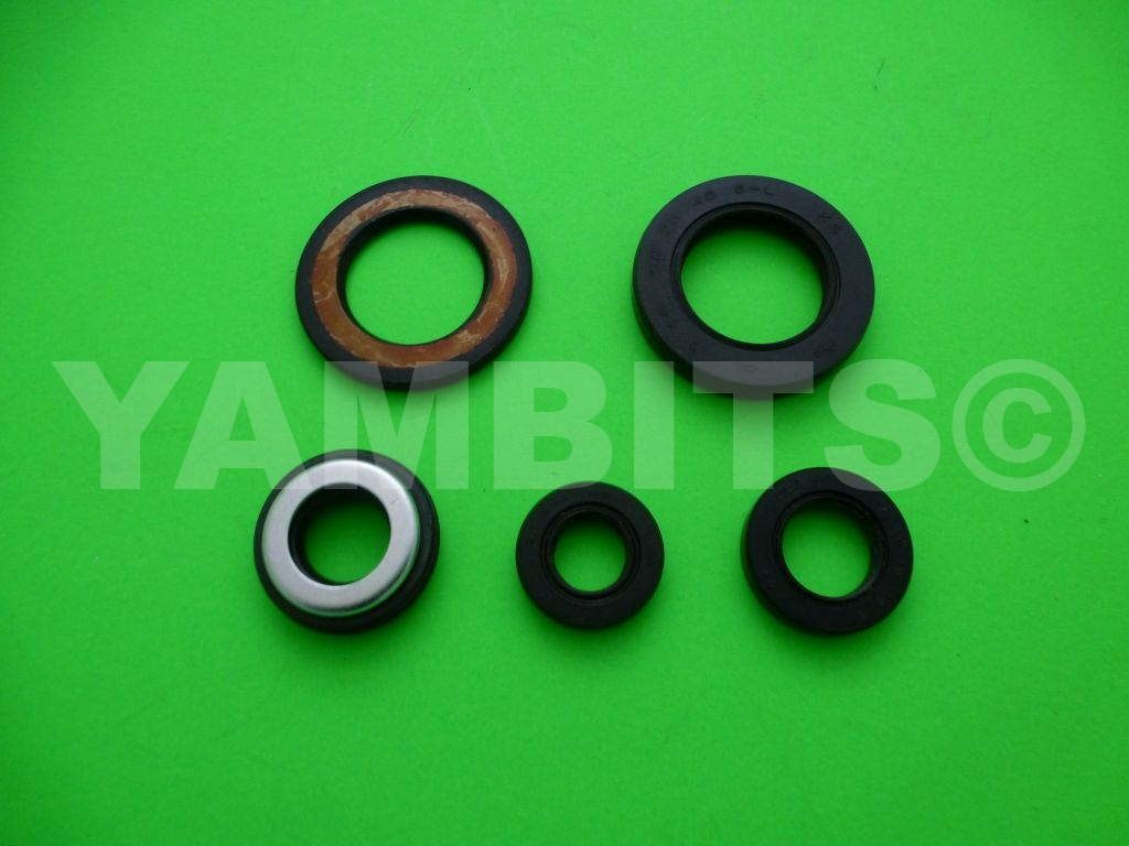 XTZ660 Tenere Engine Oil Seal Kit
