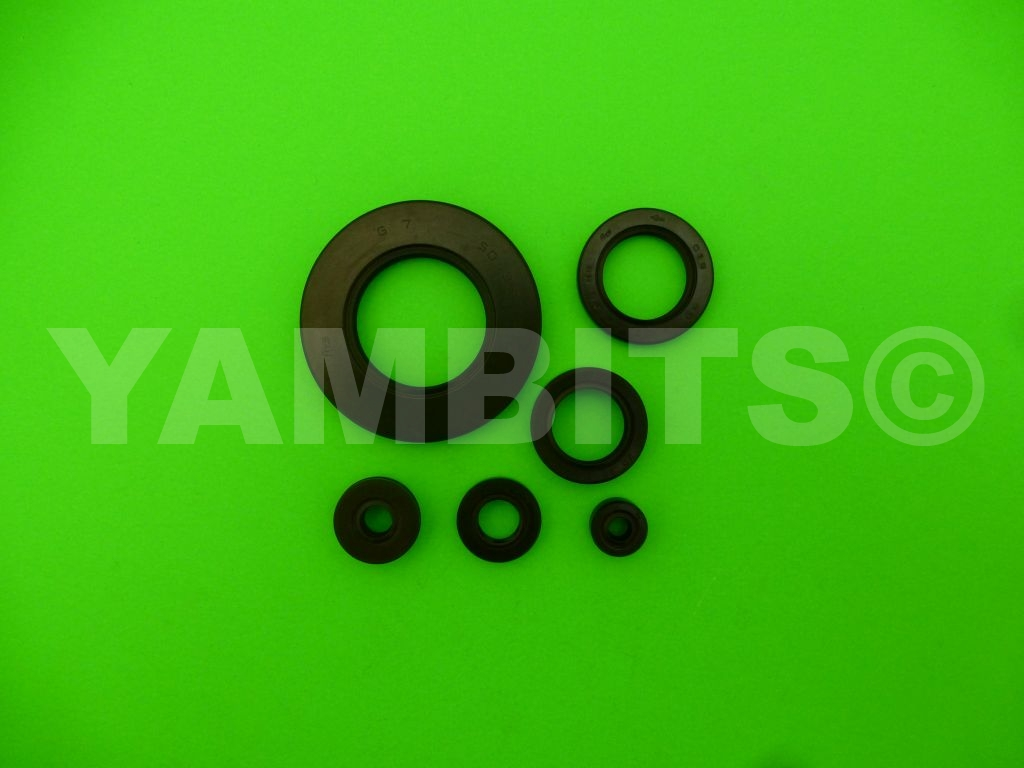XS400 Engine Oil Seal Kit