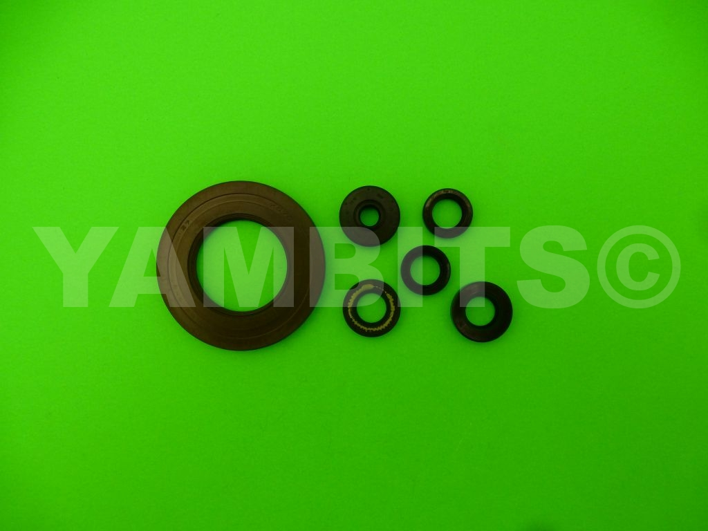 FZR1000RU EXUP Engine Oil Seal Kit