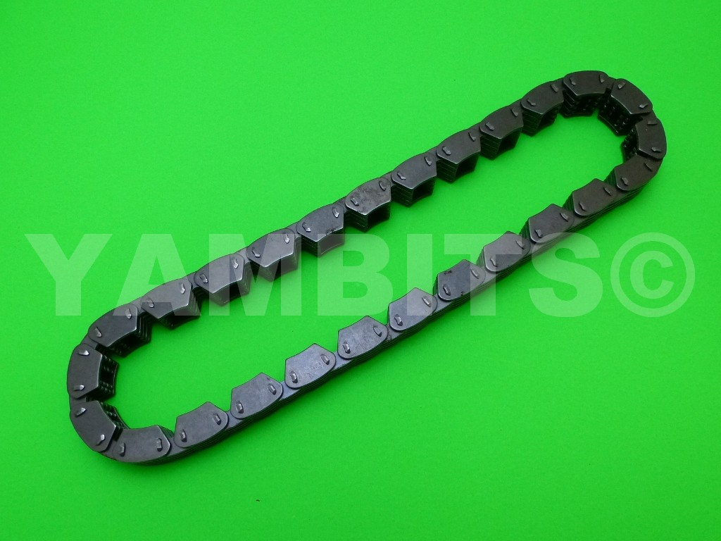 GTS1000A Primary Drive Chain