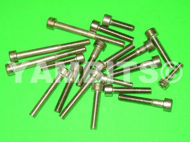 RD250 Stainless Steel Casing Screw Kit