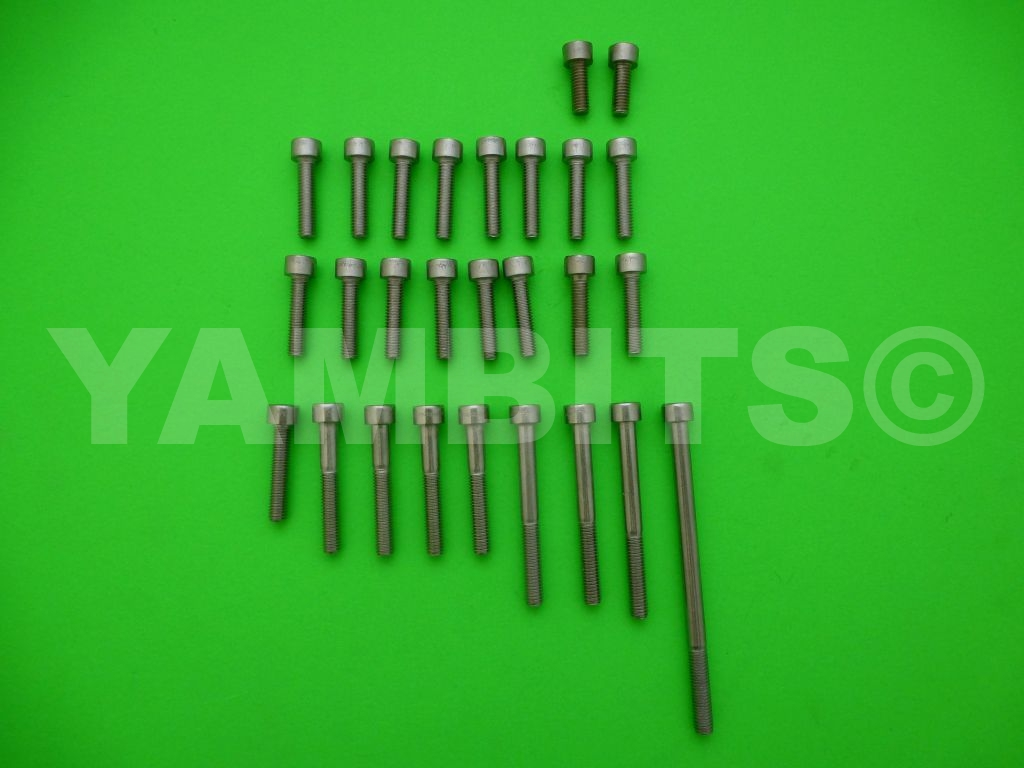 XV535 Virago Stainless Steel Casing Screw Kit