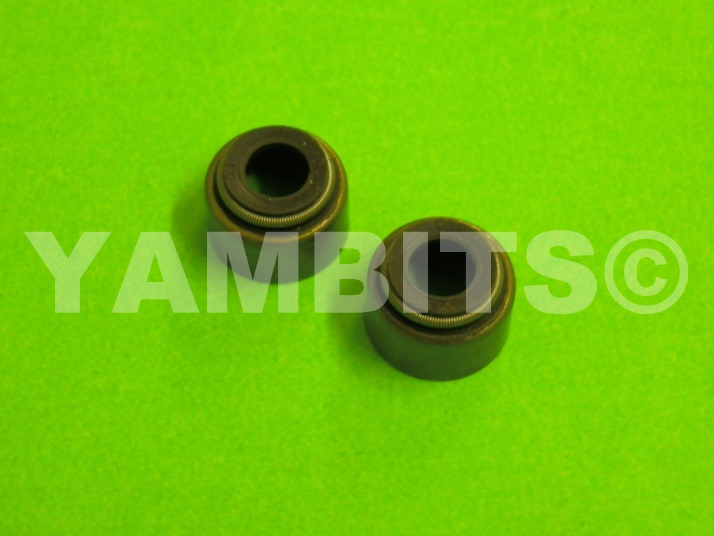 SR250SE Valve Stem Oil Seals