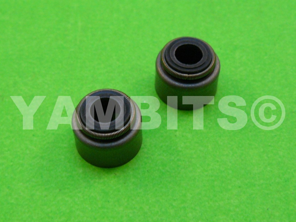 SR125 Custom Valve Stem Oil Seals