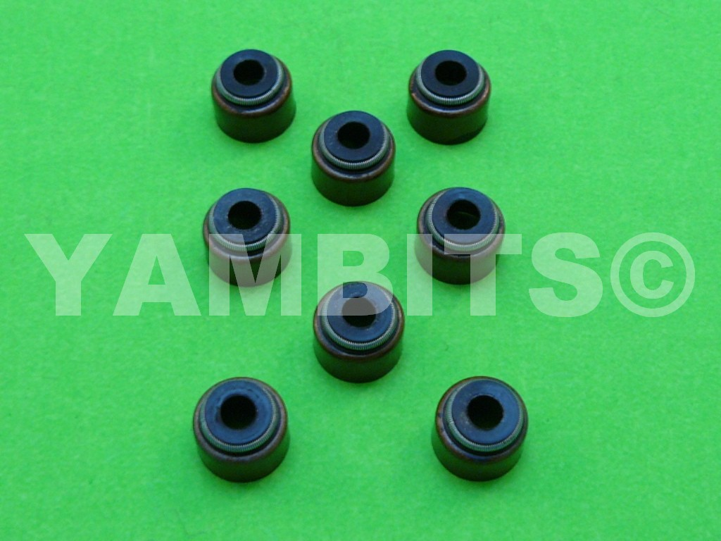 FZ600 Valve Stem Oil Seals