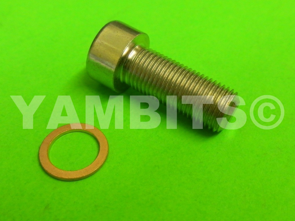 RZV500R Fork Damper Rod Bolt Kit