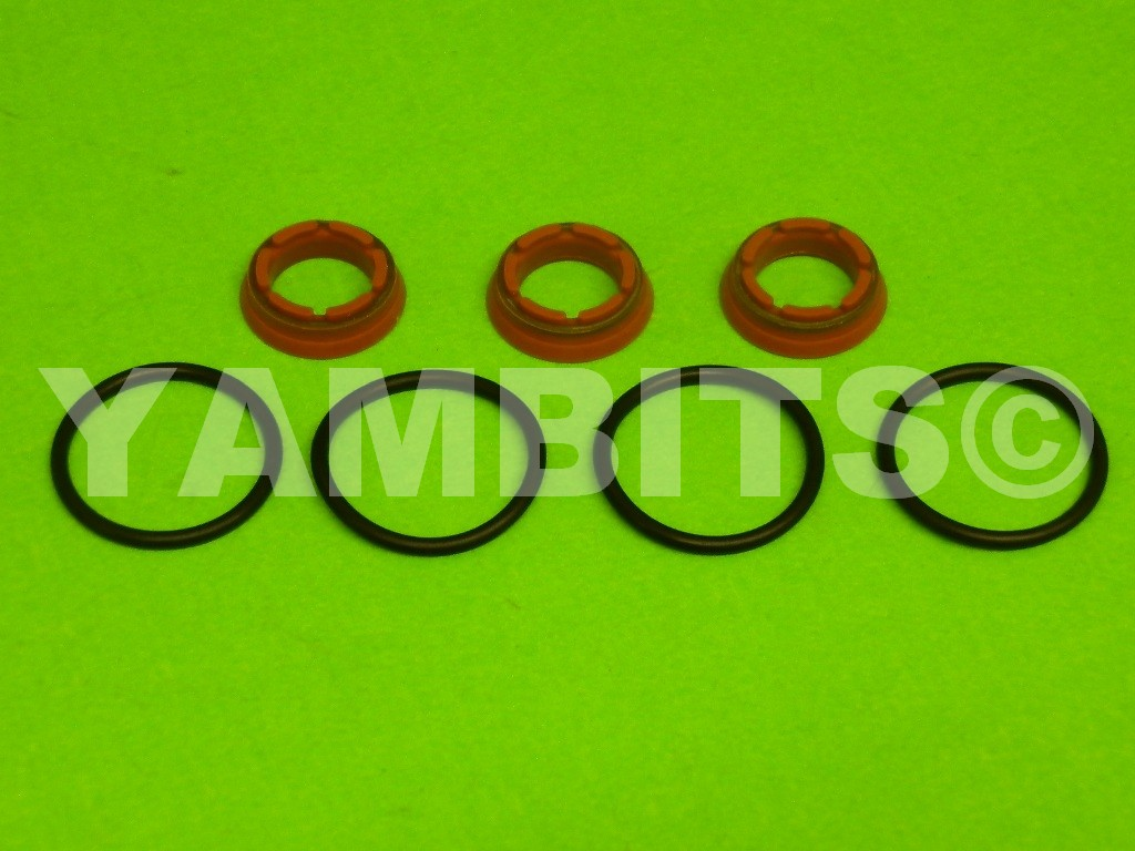 TZR250 Powervalve Seal Kit