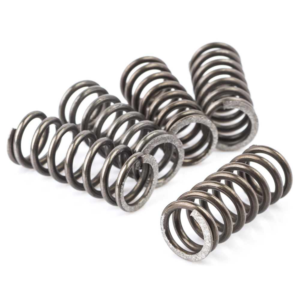 AS1 Clutch Spring Kit