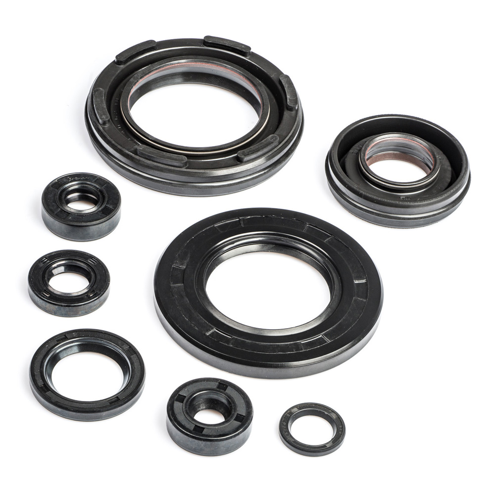 RD400C Engine Oil Seal Kit